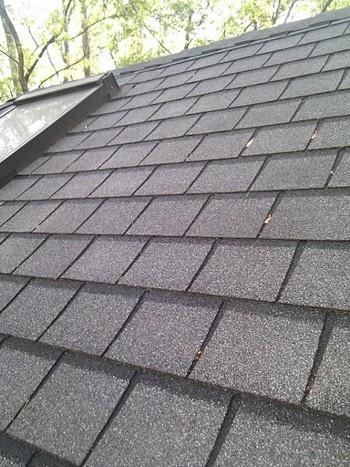 Roof Of The House รู้จักหลังคา ก่อนมีบ้านเป็นของตัวเอง