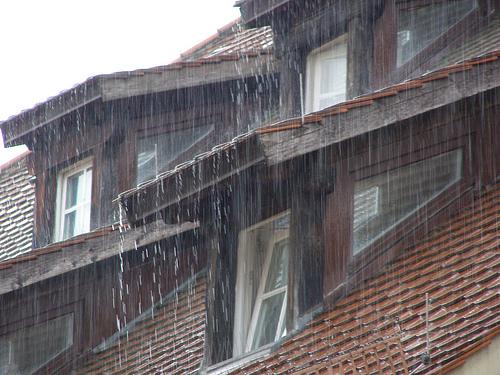 erichferdinand_rainonroof